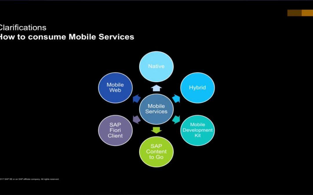 SAP Cloud Platform Mobile Services –  Mobile Development Options