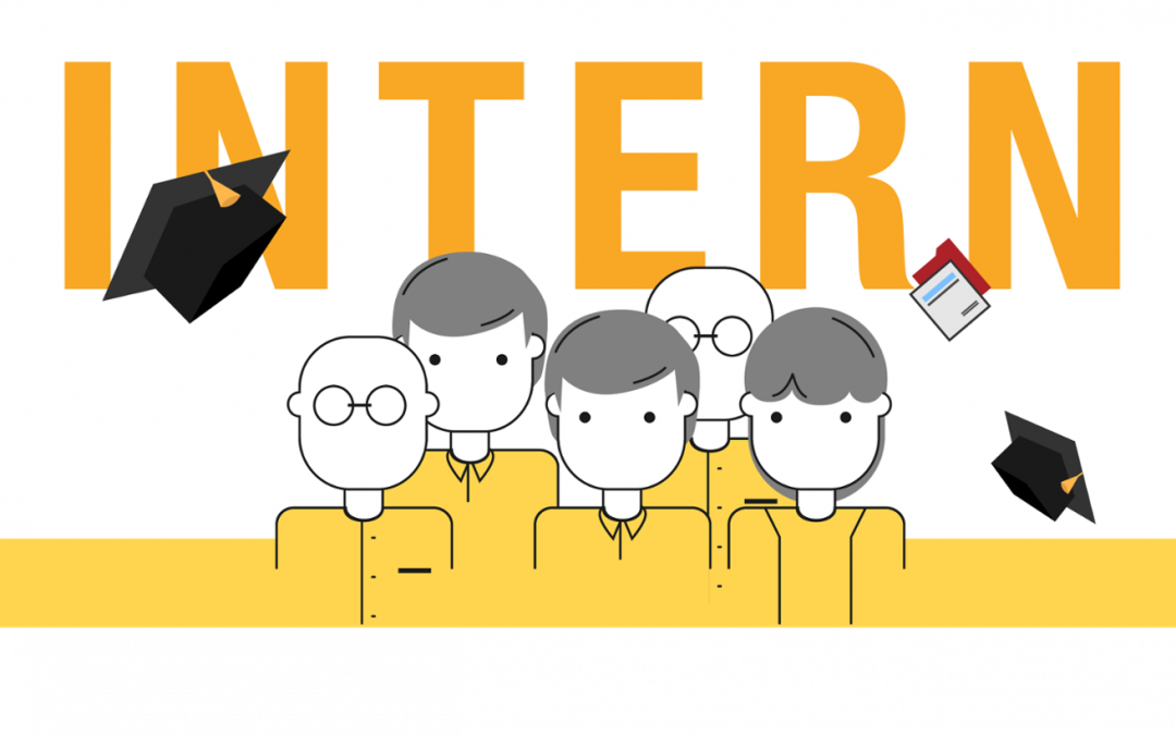 Should you hire interns? Interns will Kill your Company