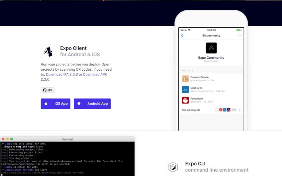 React Native App Development – Browsing the Expo.io site