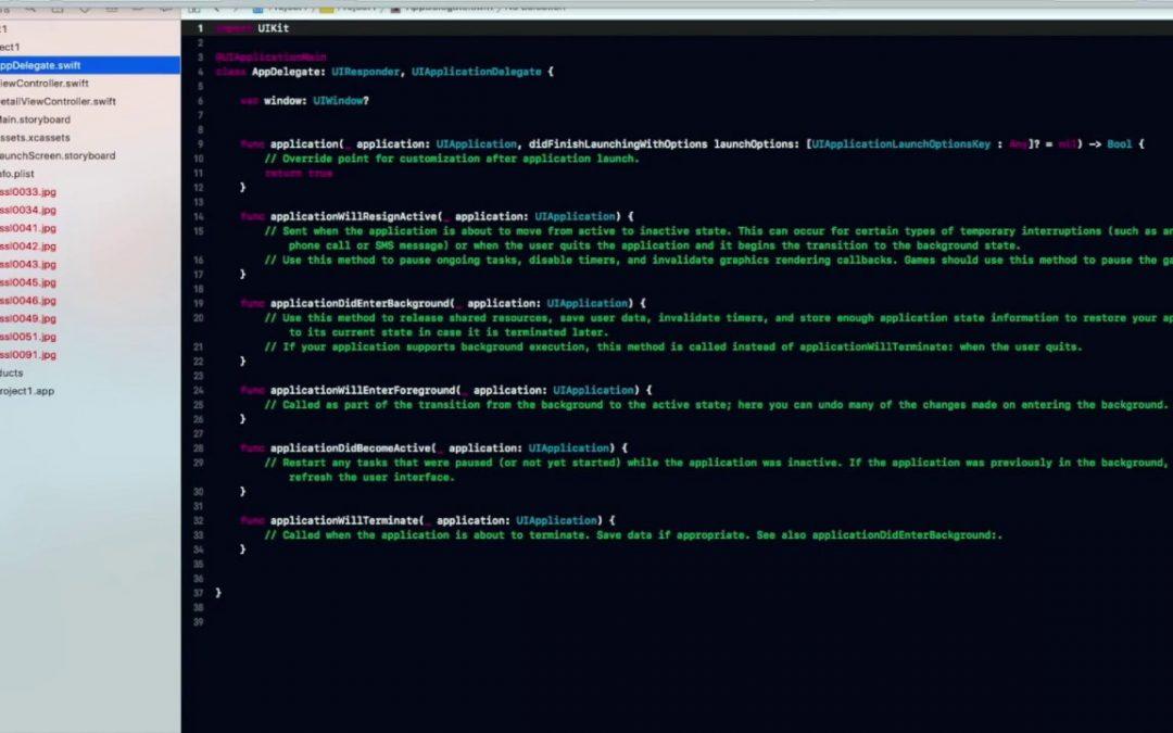 iOS App Development   Code an Image Viewer App   Project 1