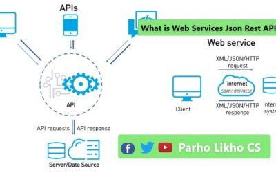 What is Web Services | Rest APIs | JSON | Restful Web APis  mobile development